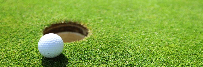 golf assistive technology
